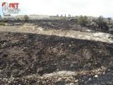 Asar Tepesinde Yangın