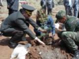 Jandarma Komutanlığı Hatıra Ormanına Ağaç Dikimi