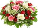 Annelerimizin Anneler Gününü Kutlarız