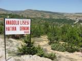 Viraj Uğruna Orman Yok Olacak