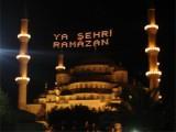 Hoşgeldin 11 Ayın Sultanı