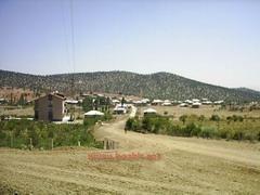 Söğüt Kasabası