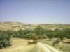 Bozdam Köyü